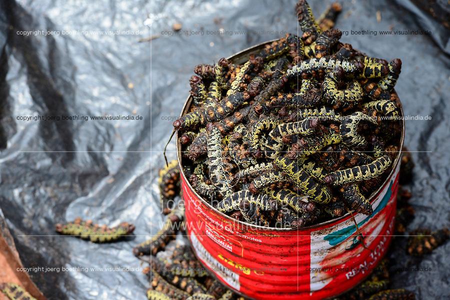 BURKINA FASO, Bobo Dioulasso, Grande MARCHE, market, sale of insects as proteins / Grosser Markt, Verkauf von Insekten, Raupen, als proteinreiche Nahrung