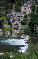 Europe/France/Languedoc-Roussillon/48/Lozère/Env de Cantobre : Vallée de la Dourbie