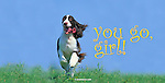 You go, girl! English Springer Spaniel running straight at you, pure joy on her face This design is offered on gift merchandise ONLY.<br />