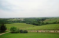 Vineyard. Chateau de la Soucherie, anjou, Loire, France