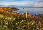 County Galway, Ireland: Morning sun on the headlands of Rinvyle Point in the Connemara Region with Inishbofin Island in the distance