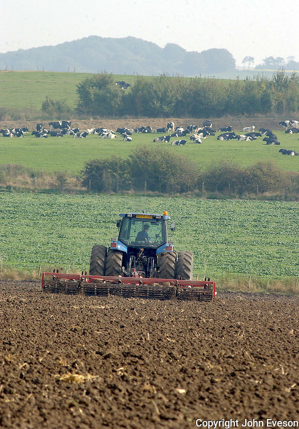 Dan Crook spring tyne cultivating a 22 acre field following winter oats ready for drilling Pearl winter barley. The field is part of 580 acres of combinable crops grown at George Crook's Aughton Farm, Collingbourne Kingston, Marlborough, Wiltshire.