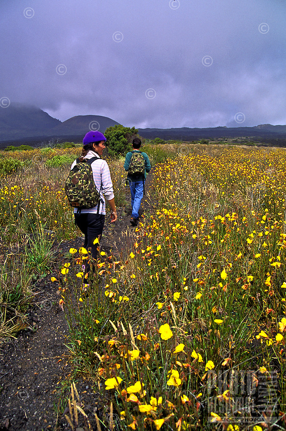 EDITORIAL ONLY: Hiking in Haleakala National Park, Maui
