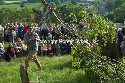 St Neot, Cornwall. 29th May 2016 Oak Apple Day celebration. The oak bough is carried to Saint Neot Parish Church, where it is hoisted to the top of the church tower.