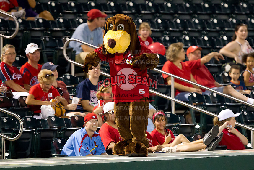Springfield Cardinals Mascot, Fetch, stands on the third base dugout during a game against the Tulsa Drillers at Hammons Field on July 19, 2011 in Springfield, Missouri. Tulsa defeated Springfield 17-11. (David Welker / Four Seam Images)