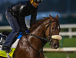 September 3, 2020:  Finnick the Fierce exercises as horses prepare for the 2020 Kentucky Derby and Kentucky Oaks at Churchill Downs in Louisville, Kentucky. The race is being run without fans due to the coronavirus pandemic that has gripped the world and nation for much of the year. Evers/Eclipse Sportswire/CSM