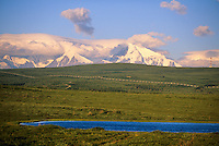 Trans Alaska oil pipeline transects tundra near Delta Junction, Alaska mountain range.
