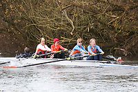 Crew: 270   W 4+ BAND-1   Lea Rowing Club   LEA-MACKAY-2<br /> <br /> Wallingford Head 2017<br /> <br /> To purchase this photo, or to see pricing information for Prints and Downloads, click the blue 'Add to Cart' button at the top-right of the page.