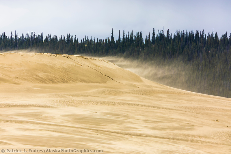 Wind blows fine sands and reshapes the Great Kobuk Sand Dunes in the Kobuk Valley National Park, Arctic, Alaska.