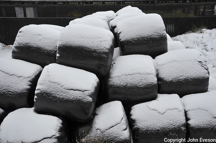 Snow on big bales of silage...Copyright..John Eveson, Dinkling Green Farm, Whitewell, Clitheroe, Lancashire. BB7 3BN.01995 61280. 07973 482705.j.r.eveson@btinternet.com.www.johneveson.com