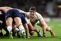 Tom Curry of England in action at a scrum. Guinness Six Nations match between England and Scotland on March 16, 2019 at Twickenham Stadium in London, England. Photo by: Patrick Khachfe / Onside Images