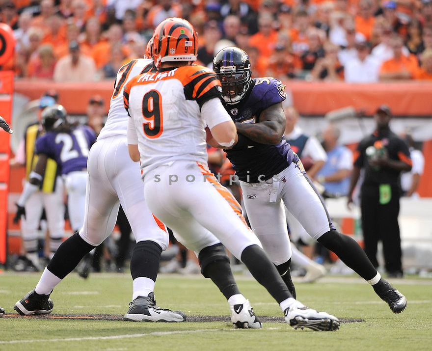 TERRELL SUGGS, of the Baltimore Ravens in action during the Ravens game against the Cincinnati Bengals on September 19, 2010 Paul Brown Stadium in Cincinnati, Ohio...The Bengals win 15-10