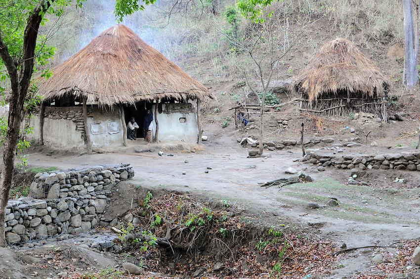 A Van Gujjar hut in the Shivalik Hills.
