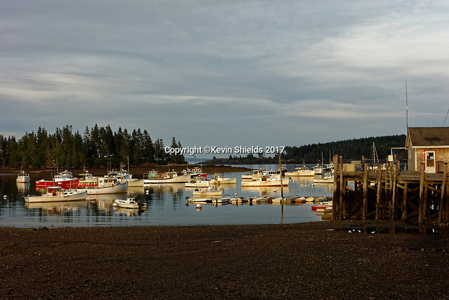 Lobster boats in the harbor, Owls Head, Maine, USA