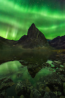 A dazzling aurora blankets the night sky reflected in a lake below in the wilderness of the Ogilvie Mountains, Yukon Territory.