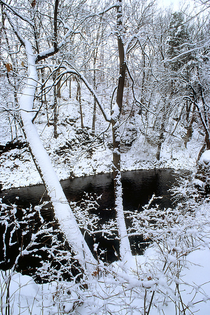 Winter's First Snow Covers Rock Creek Canyon in Kankakee River State Park, Kankakee & Will Counties, Illinois