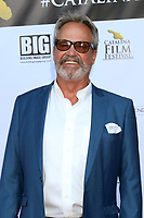 LOS ANGELES - SEP 27:  Bill Banning at the 2019 Catalina Film Festival - Friday at the Catalina Bay on September 27, 2019 in Avalon, CA