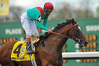 Went the Day Well with John Velazquez up and trained by Graham Motion ,wins the G3 Vinery Spiral Stakes at Turfway Park in Florence, Kentucky Saturday March 24, 2012.