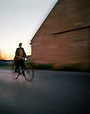 AUSTRIA, Podersdorf, a woman rides her bicycle in the early morning, Burgenland