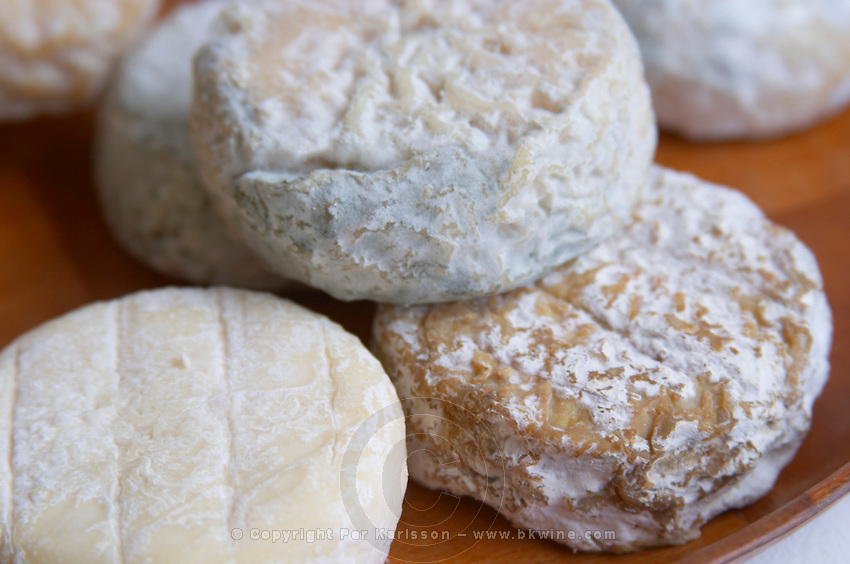saint marcellin cheese of varying maturity dom a voge cornas rhone france