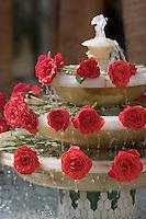 Afrique/Afrique du Nord/Maroc/Fèz: Détail Fontaine et roses du Palais Jamai