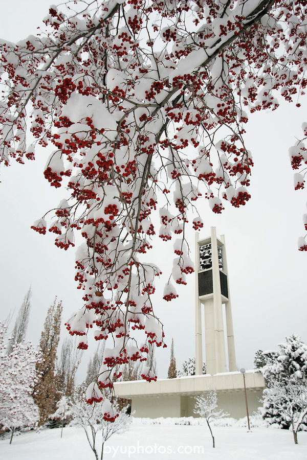 GCS Snow shots, Bell Tower, Marriott Center, MOA.January 6, 2005.Photography by Mark A. Philbrick