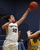 North Farmington at Clarkston, Girls Varsity Basketball, 2/13/14