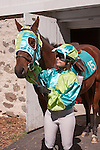 A vintage Race Horse winner and jockey