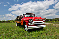Hill Country winery with this bright red GMC 350 truck in front with wine barrels on the bed near Kerrville. The truck sits in front of the grapes vines that have been planted  on the site on this beautiful day with nice blue sky and puffy clouds in the Texas Hill Country.
