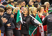 17th March 2018, Principality Stadium, Cardiff, Wales; NatWest Six Nations rugby, Wales versus France; Wales fans celebrate at the final whistle