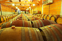 Cave P et Andre Perret in Chavanay, making Condrieu, Saint Joseph, Cote Rotie.  In the winery.  In the barrel aging cellar. Oak barrels with ageing wine.    Andre André P et A Perret, Chavanay, Rhone, France, Europe