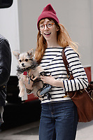 www.acepixs.com<br /> April 5, 2017 New York City<br /> <br /> Molly Bernard carries a dog on the set of 'Younger' in New York City on April 5, 2017.<br /> <br /> Credit: Kristin Callahan/ACE Pictures<br /> <br /> Tel: 646 769 0430<br /> Email: info@acepixs.com