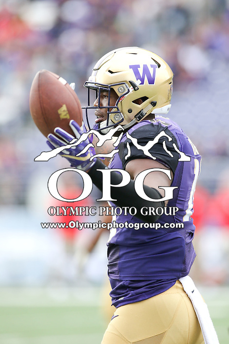 03 September 2016:  Washington's Darrell Daniels against Rutgers.  Washington defeated Rutgers 48-13 at the University of Washington in Seattle, WA.