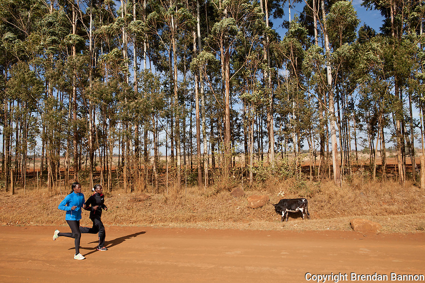 Uganda runner Janet Achola, left, jogging with Kenyan Florence Kiplagat, right, prior to  a training session outside of Eldoret, Kenya.