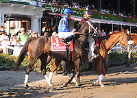 It's Tricky (no. 1) runs in the Personal Ensign Invitational Handicap on August 26, 2012 at Saratoga Race Track in Saratoga Springs, New York.  (Bob Mayberger/Eclipse Sportswire)