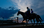 BALTIMORE, MD - MAY 15: Trainer D. Wayne Lukas ponies Preakness hopeful Bravazo off the track during Preakness Week at Pimlico Race Course on May 15, 2018 in Baltimore, Maryland (Photo by Scott Serio/Eclipse Sportswire/Getty Images)