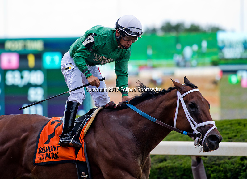 ELMONT, NY - JUNE 09: Roy H #7, ridden by Paco Lopez, wins the True North Stakes during Friday racing at the Belmont Stakes Racing Festival at Belmont Park on June 9, 2017 in Elmont, New York (Photo by Scott Serio/Eclipse Sportswire/Getty Images)