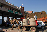 India, camel cart at Toll Station, highway between Delhi and Jaipur / INDIEN <br /> Highway zwischen Delhi und Jaipur Tollstation, Kontrast Camelwagen und Autos