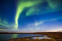 Aurora borealis, (northern lights) over Toolik lake, arctic, Alaska.