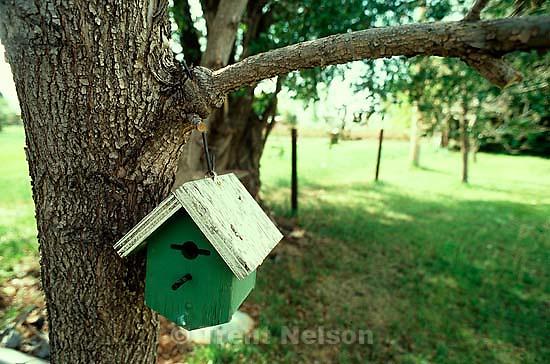 Birdhouse. &amp;#xA;<br />