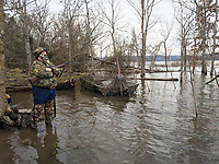 NWA Democrat-Gazette/FLIP PUTTHOFF<br />Alan Bland of Rogers hunts ducks Jan. 21 2017 at Beaver Lake last season, years after the quicksand episode.