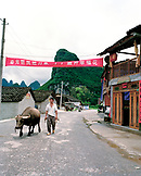 CHINA, Guilin, farmer walks with his wild buffalo on street in a rural area ouside of Guilin