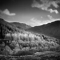 The Trossachs, Perthshire, Scotland, UK