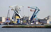 Nederland - Amsterdam - 2018.  MAJA stuwadoors. Overslag van bulkgoed in de Coenhaven.    Foto Berlinda van Dam / Hollandse Hoogte.