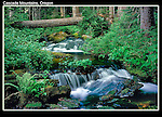 Waterfall in Cascade Mountains, Elkhorn, Oregon