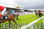 Action at Listowel races on Sunday.