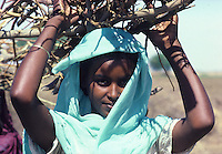 Portrait of young girl cafrrying firewood