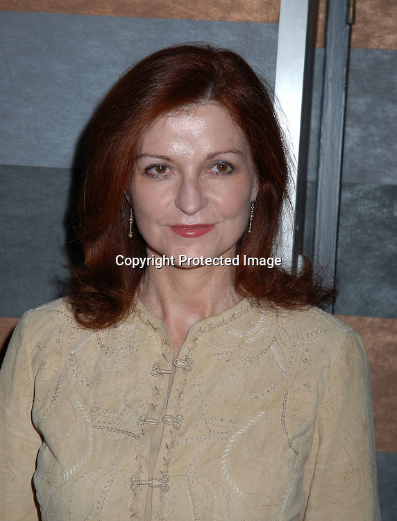 "Maureen Dowd..at the 3rd Annual  God's Love We Deliver ""Authors in Kind""..Luncheon with guest authors Maureen Dowd,  Mike Lupica..and Frank McCourt on April 4, 2006 at The Rainbow Room. ..Robin Platzer, Twin Images"