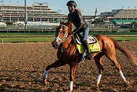 LOUISVILLE, KY - MAY 1: Vino Rosso, trained by Todd Pletcher, exercises in preparation for the Kentucky Derby at Churchill Downs on May 1, 2018 in Louisville, Kentucky. (Photo by Eric Patterson/Eclipse Sportswire/Getty Images)