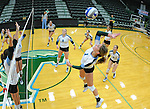 Tulane Women's Volleyball hold their annual scrimmage in preparation for the upcoming season.